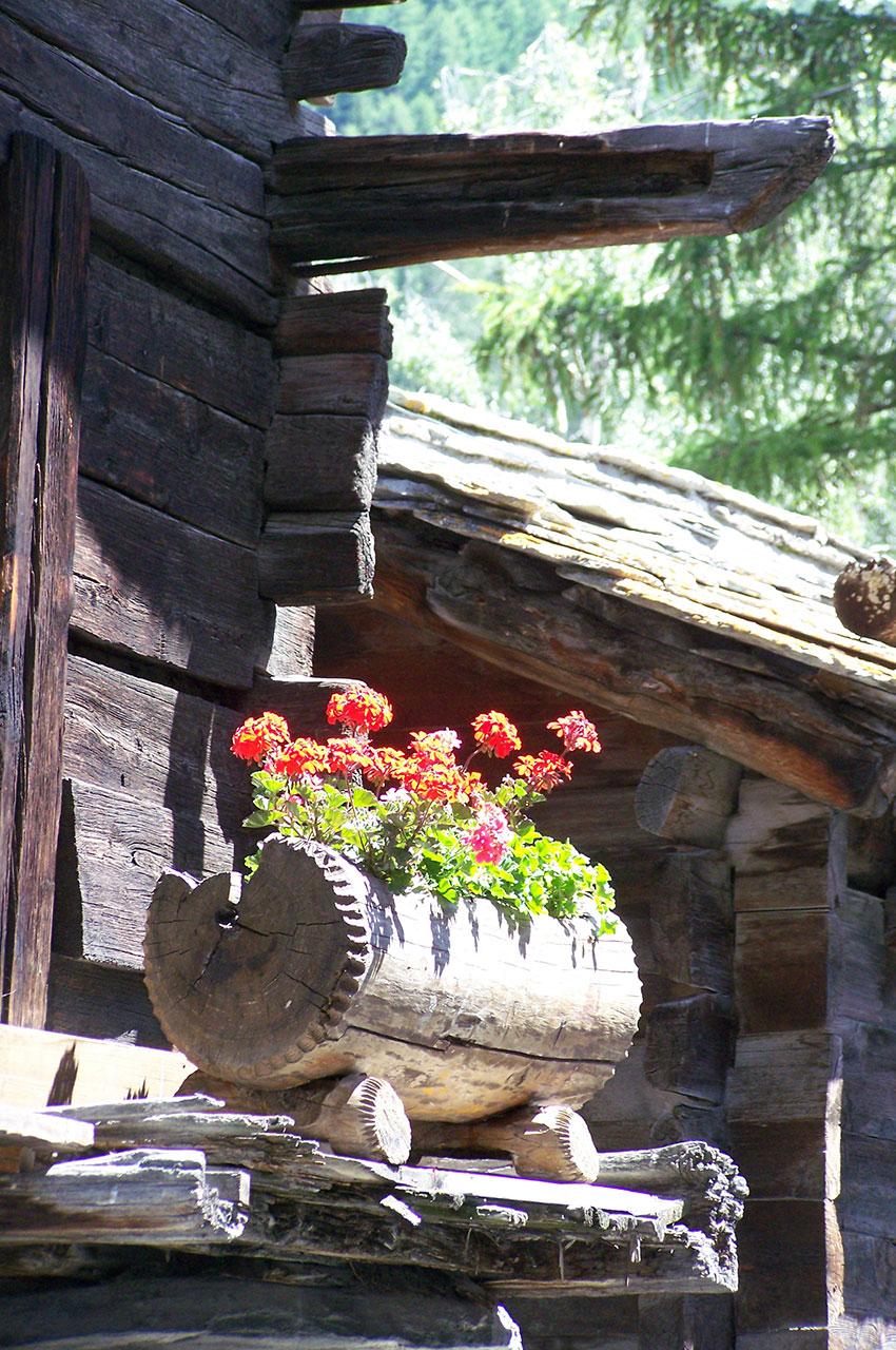 Dans l'ancien village, de vieilles maisons fleuries