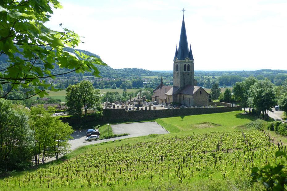 L'église de Saint-Sorlin en Bugey et les vignes