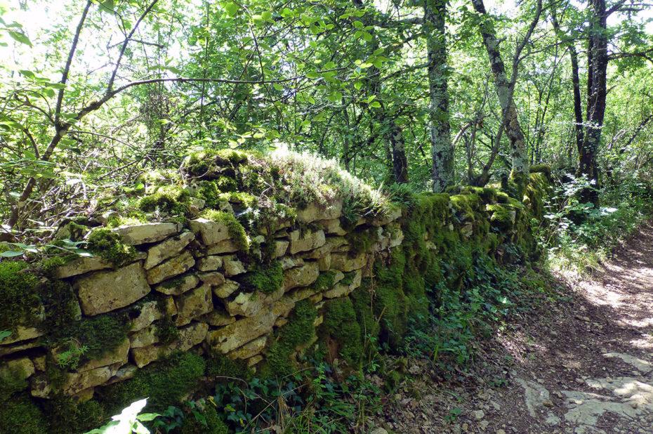 Mur en pierre au bord du chemin