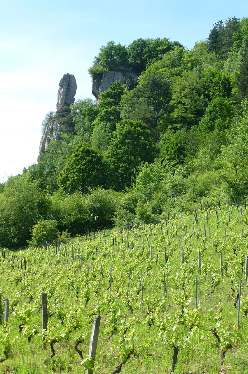 Le rocher de la Pouponne et les vignes à Saint-Sorlin en Bugey