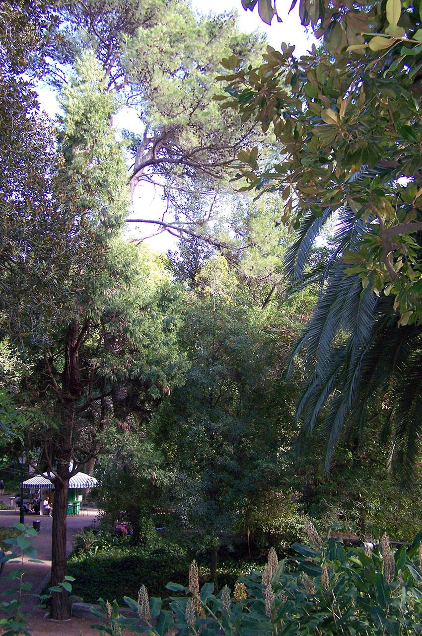 Dans les allées du parc de l'Estrela