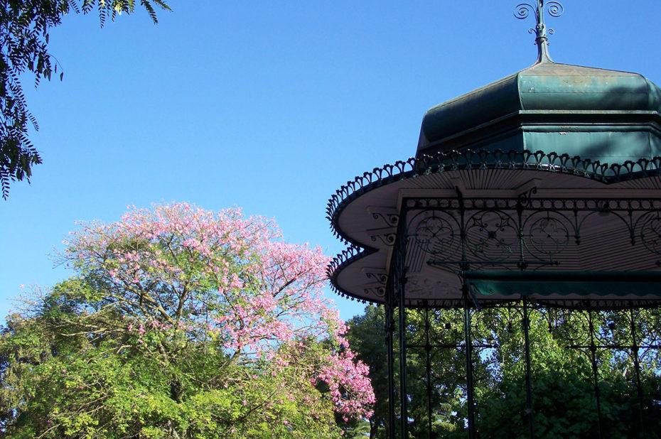 Un kiosque au milieu des arbres en fleurs