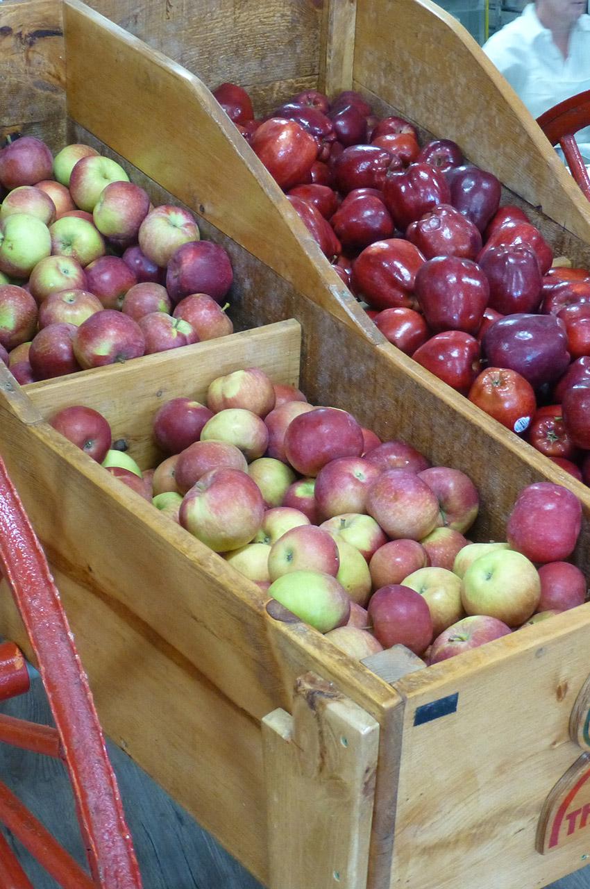 Pommes rouges dans un chariot