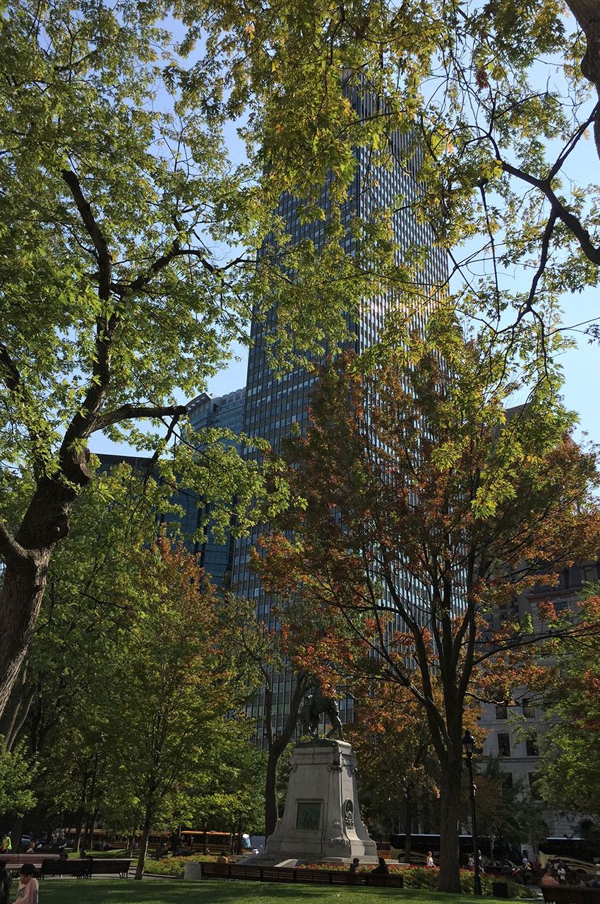 Les premières couleurs de l'automne à Montréal