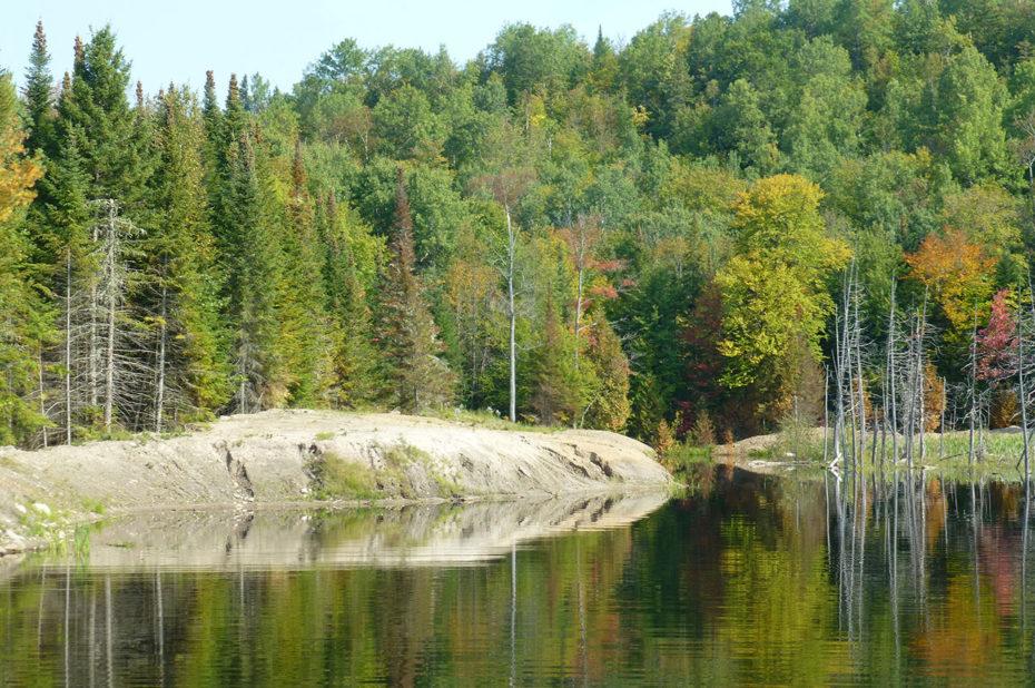 Les couleurs de l'automne se reflètent sur l'eau