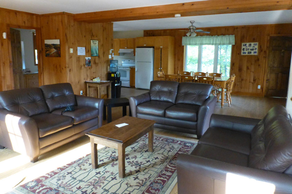 Un grand salon doté de canapés en cuir