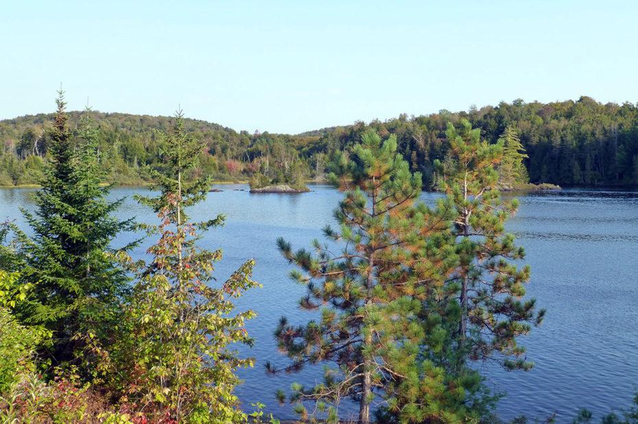 Le lac Blanc entouré d'arbres se parant doucement de leurs couleurs d'automne