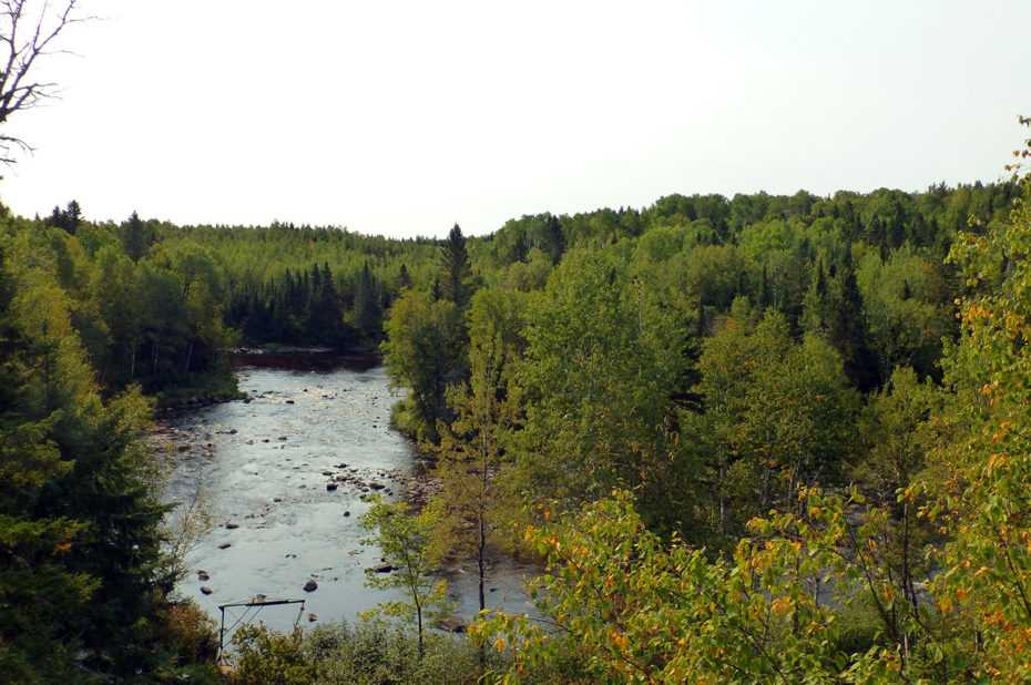 Rivière traversant le zoo de Saint-Félicien