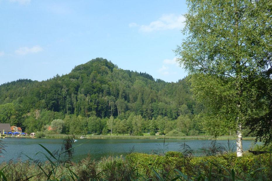 Au bord de l'étang Stockenweiler Weiher, à Hergensweiler