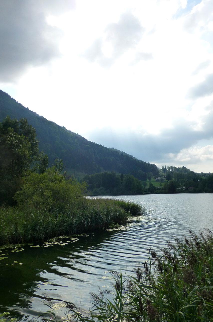 L'un des bras de l'étang Stockenweiler Weiher