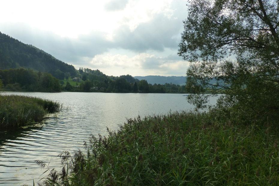 L'étang Stockenweiler Weiher, un coin idéal pour les pêcheurs