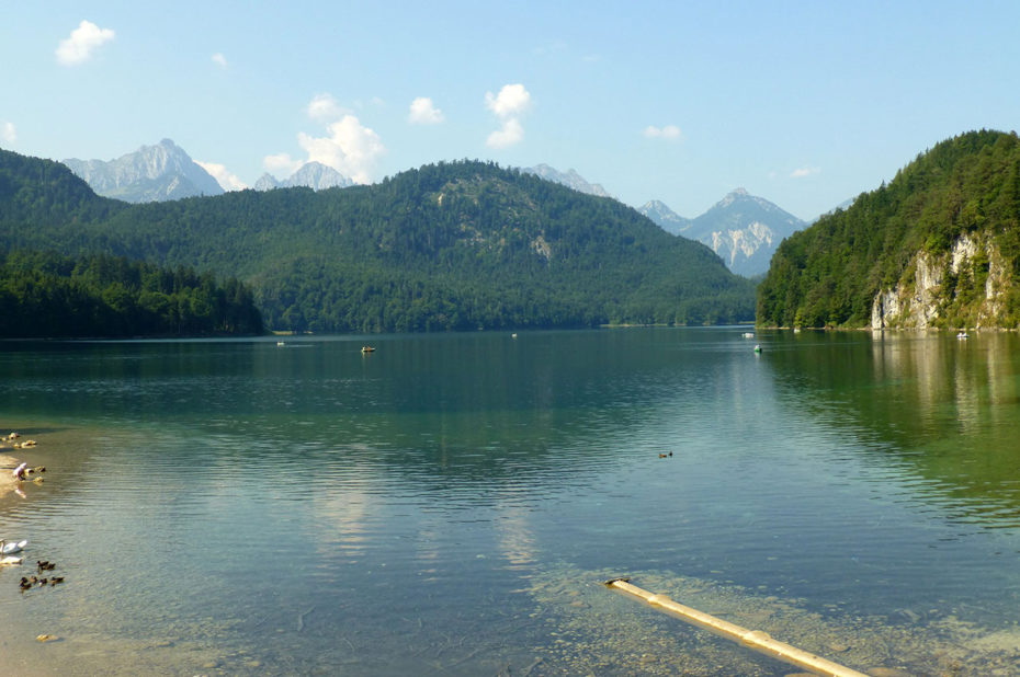 Le lac Alpsee, un des lacs les plus propres d'Allemagne