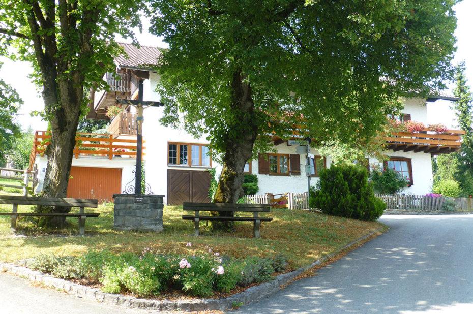 Une belle maison dans les arbres