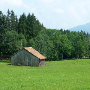 Une cabane au milieu d'un champ