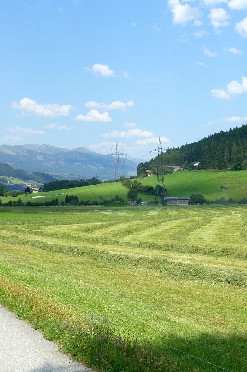 Un champ en bordure de la route à Bramberg