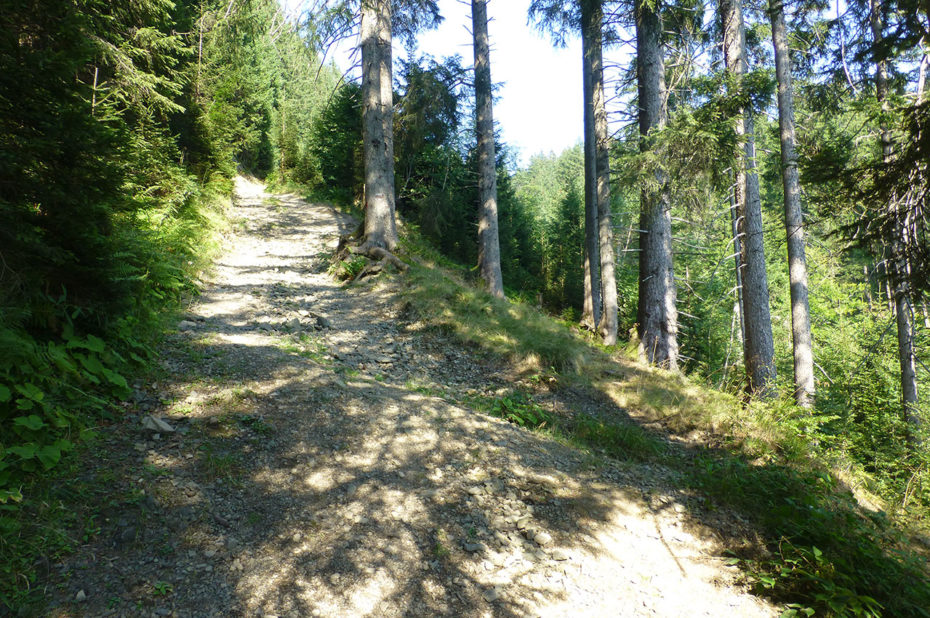 Le chemin de randonnée monte vers les alpages