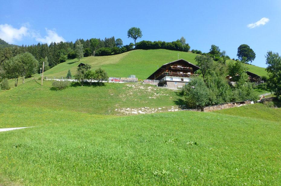 La maison d'hôtes Ferienwohnung Birkleiten sur sa colline