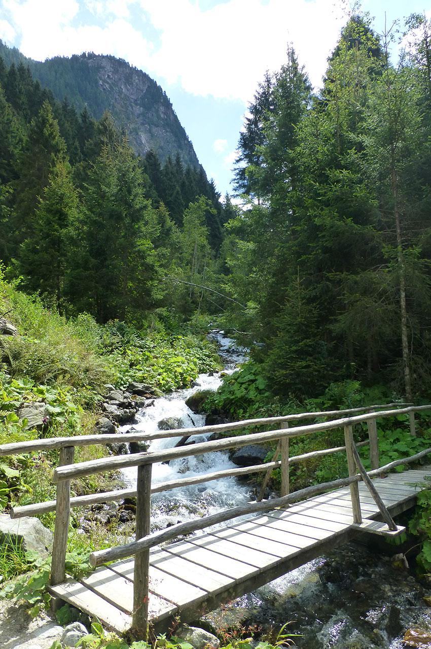 Petit pont de bois pour traverser le torrent