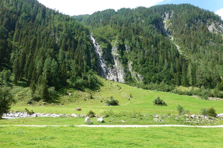 Le plateau entre alpages, forêts et cascades