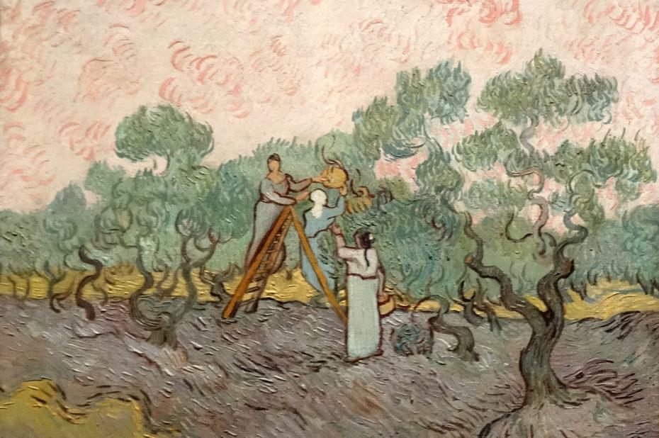 Femmes ramassant des olives de Vincent Van Gogh