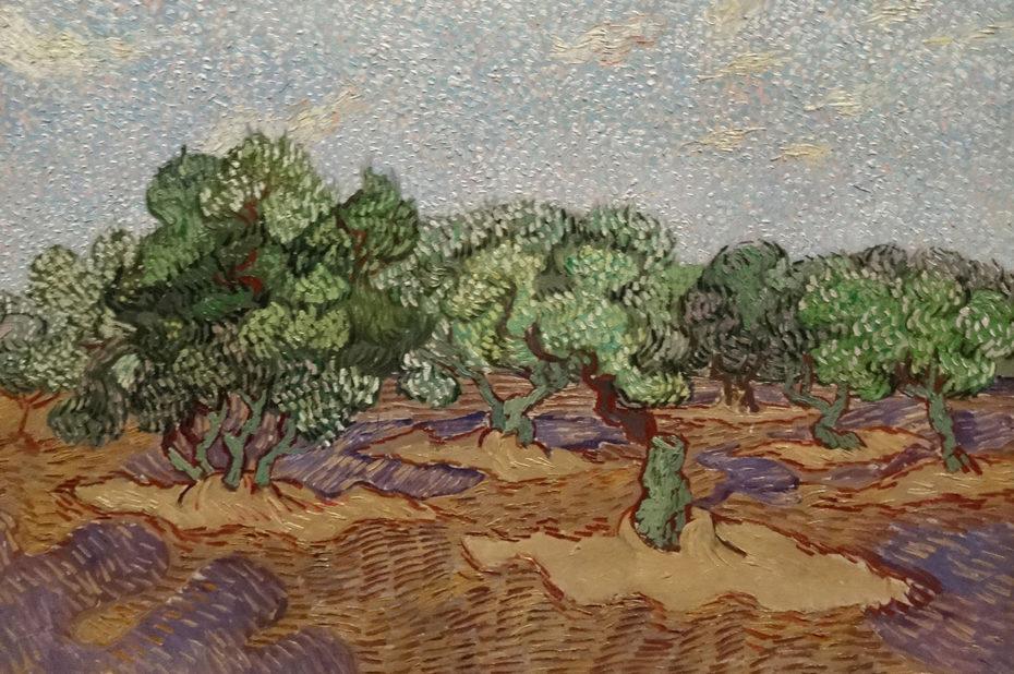 Oliviers de Vincent Van Gogh