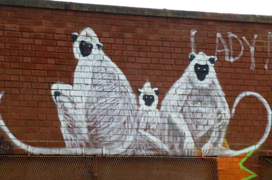 Famille de singes blancs
