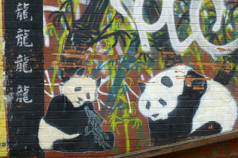 Pandas de Chine