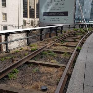 Ancienne voie de chemin de fer de Chelsea
