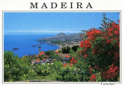 Vue sur la mer à Funchal, parmi les fleurs
