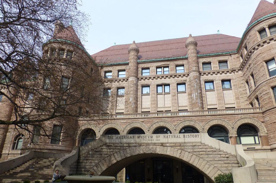 Musée américain d'Histoire Naturelle de New York