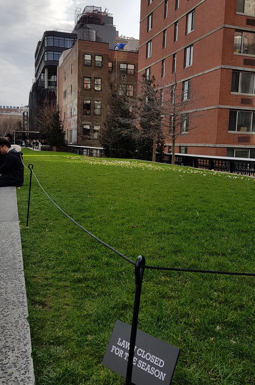 Promenade verte au cœur de New York