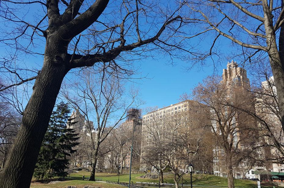 Dans les allées du parc, entouré des hauts buildings new-yorkais