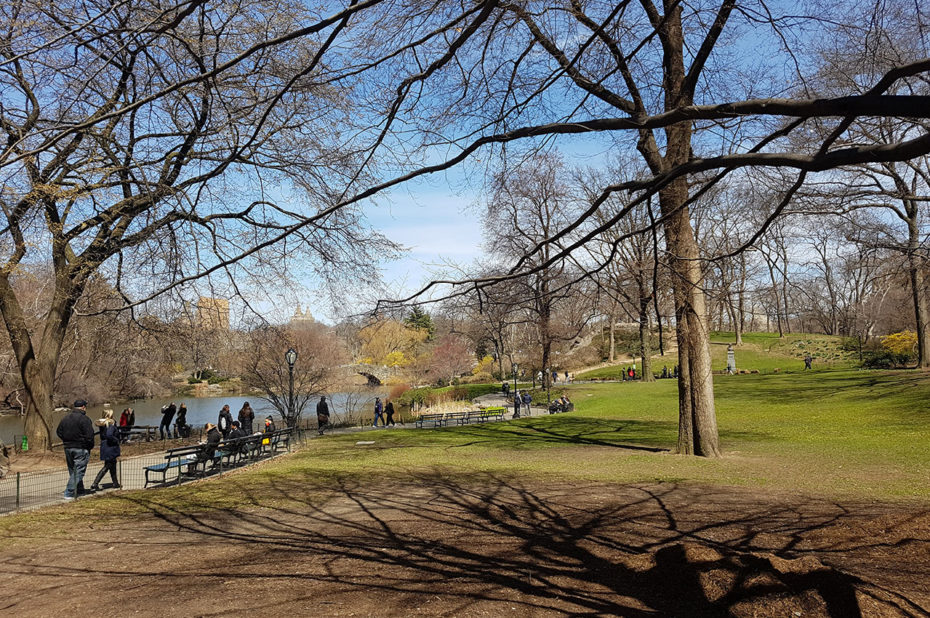 Balade dominicale à Central Park