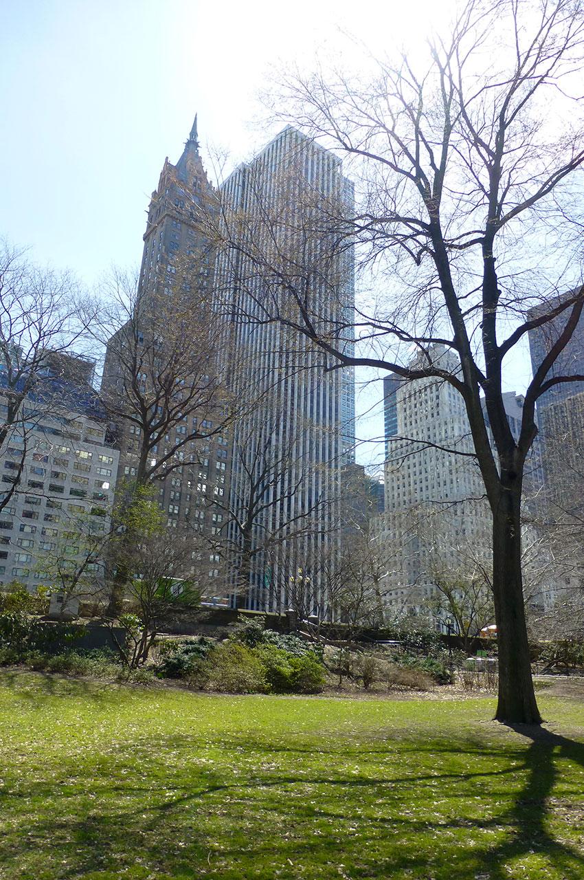 Central Park, havre de tranquillité au cœur de New York