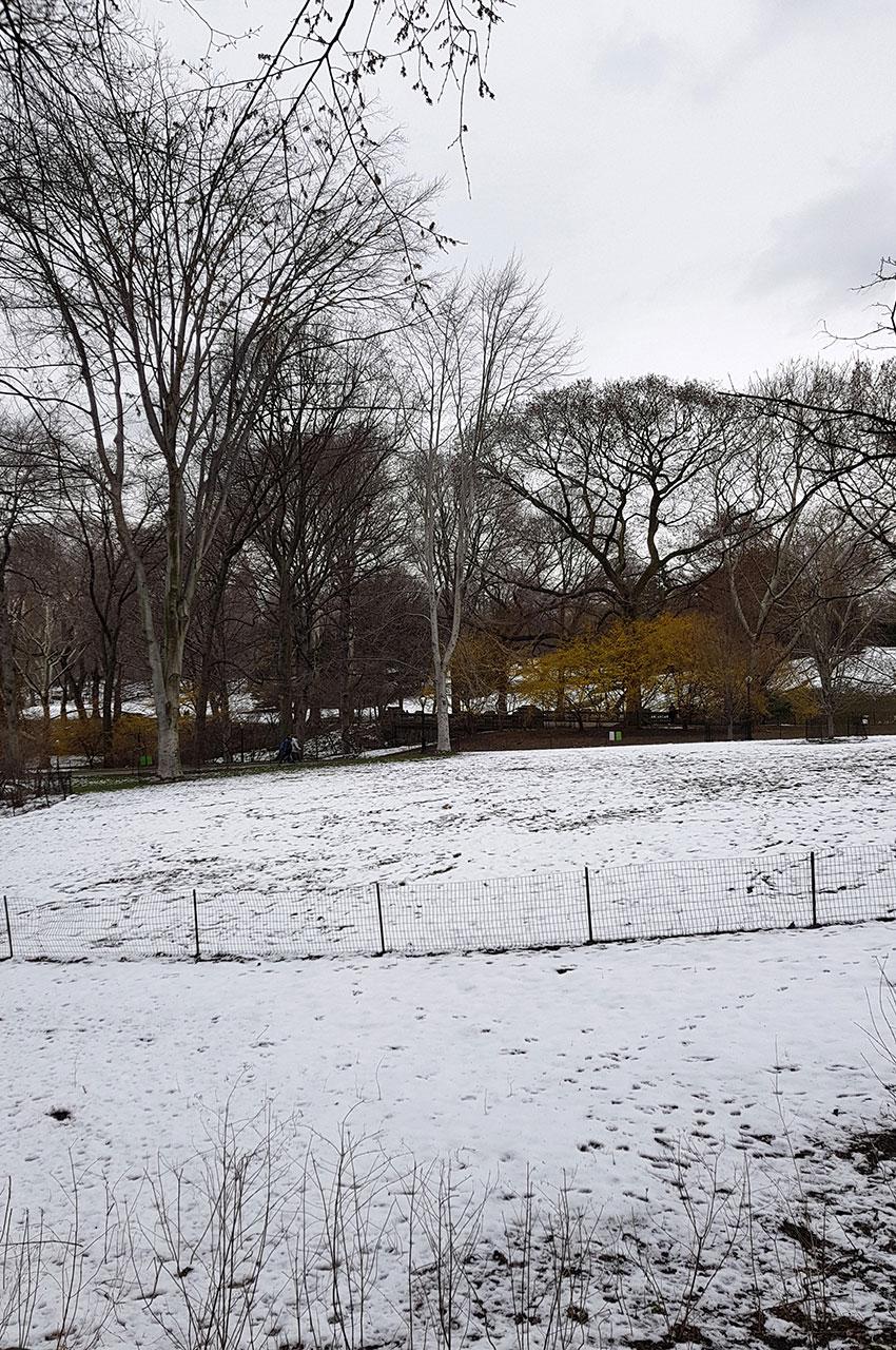 De la neige à Central Park au mois d'avril