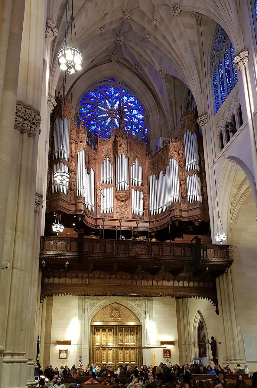 L'orgue de la cathédrale et la rosace