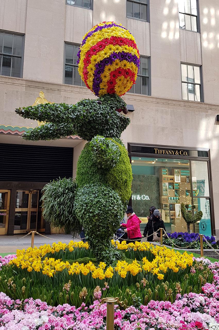 Sculptures florales et végétales