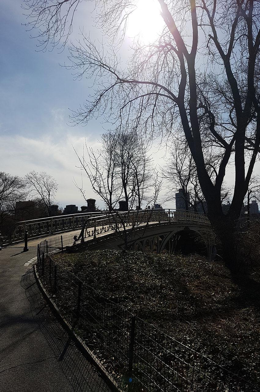 Le soleil du matin sur le Gothic Bridge
