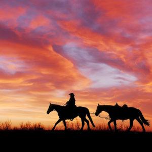 Un cowboy sur son cheval au coucher de soleil