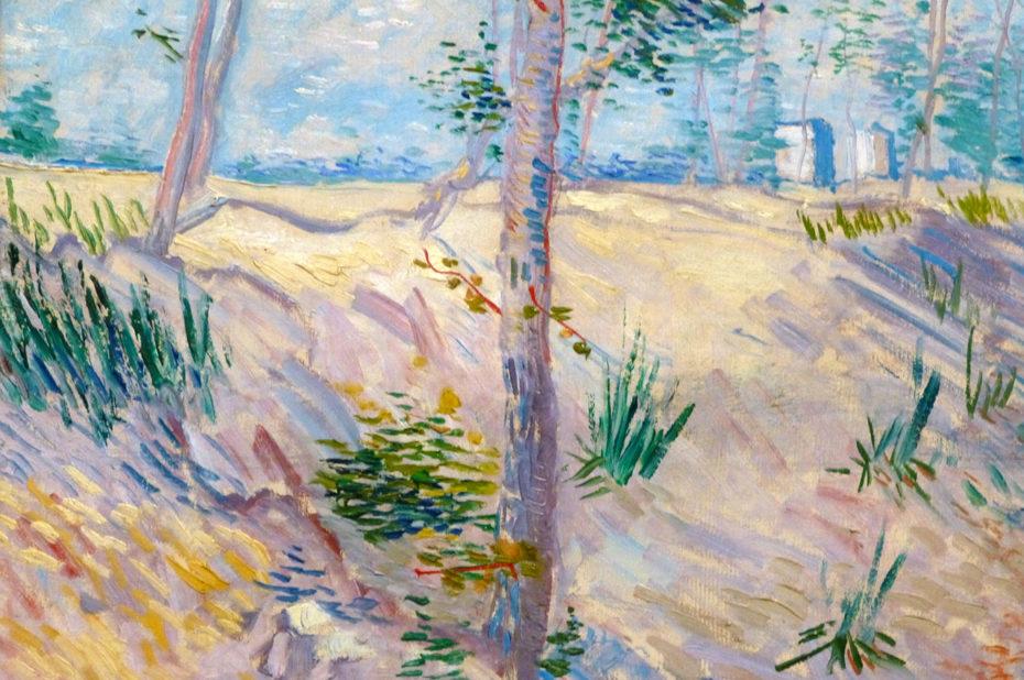 Arbres dans un champ ensoleillé de Vincent Van Gogh