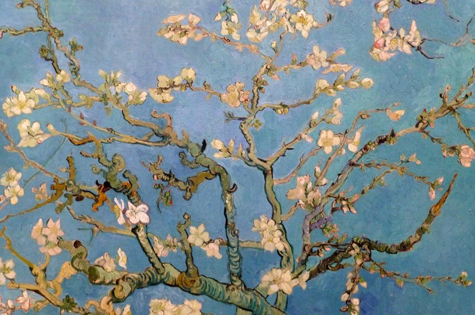 Branches fleuries d'amandiers de Vincent Van Gogh