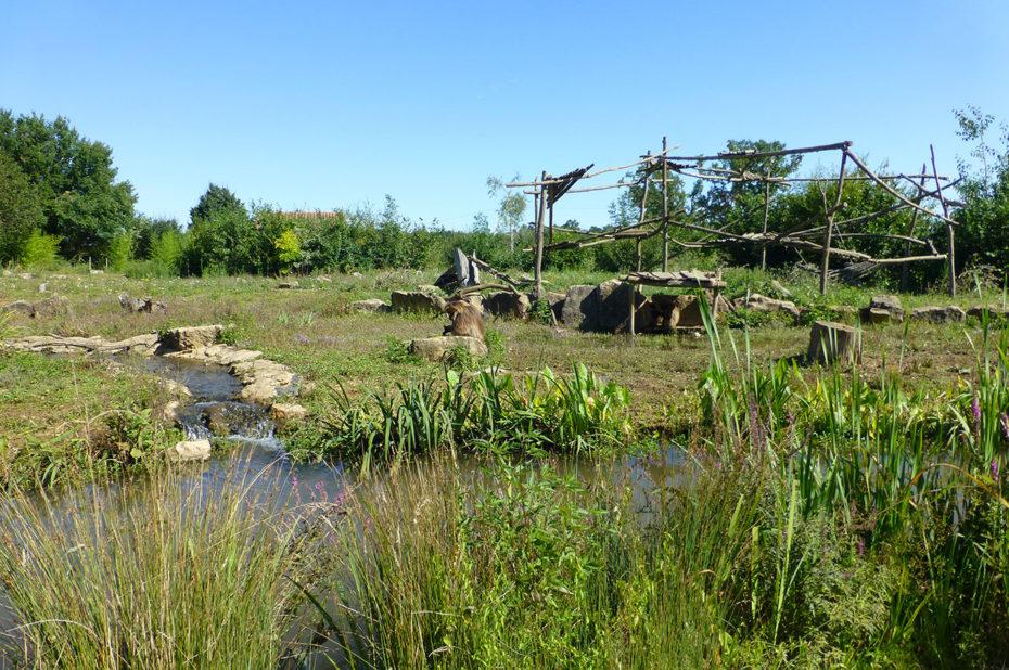 À Romagne, le parc de la vallée de Singes fait plus de 20 hectares