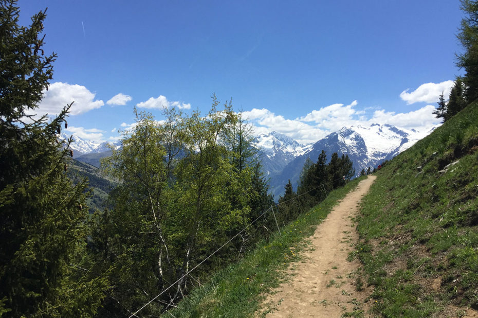 Départ tranquille de la randonnée sur le chemin panoramique