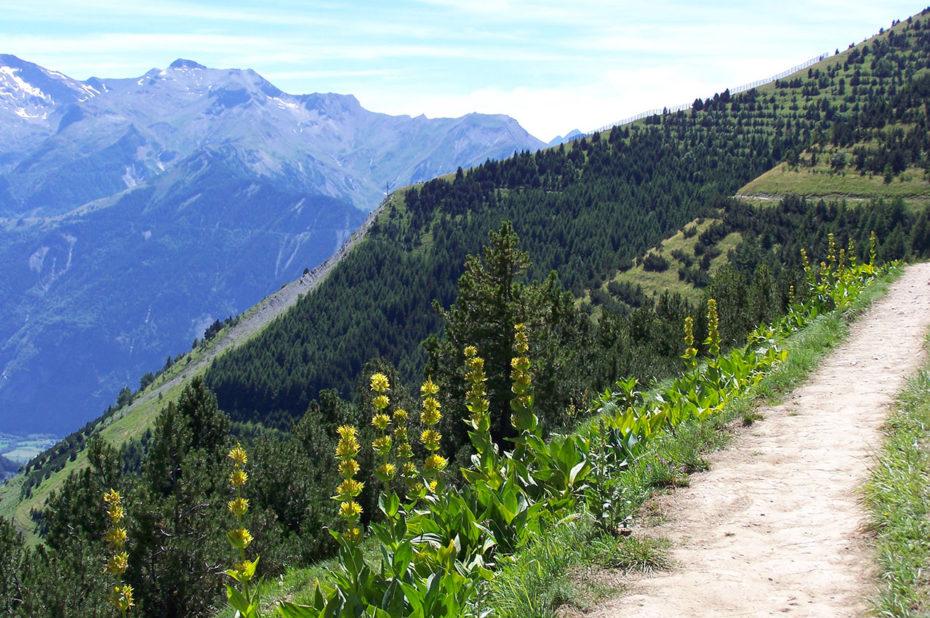 Le chemin panoramique de l'Alpe d'Huez en été