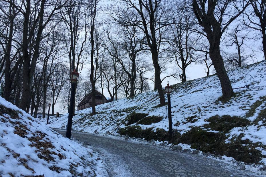 Chemin pavé à l'intérieur de la forteresse