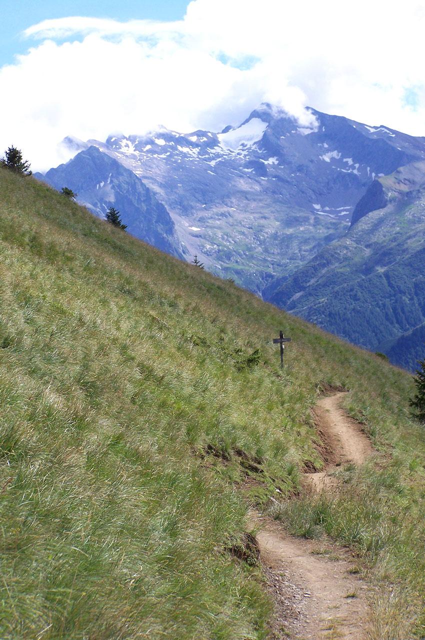 Chemin reliant la forêt d'Huez à Villard Reculas