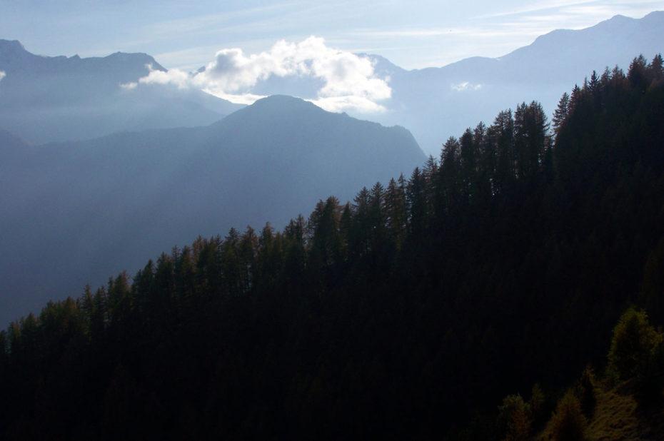 La Combe du Bras et la forêt d'Huez