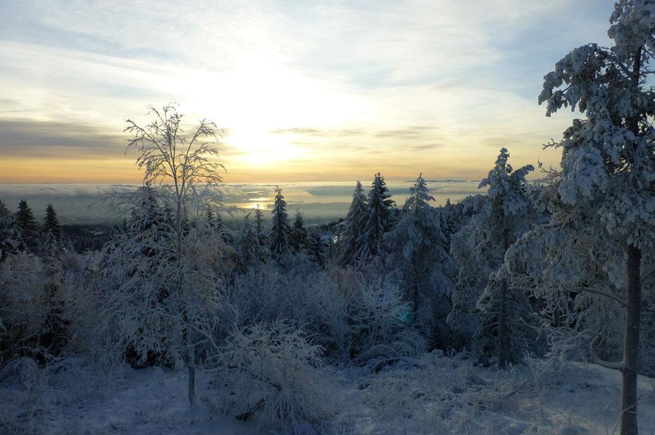 Coucher de soleil sur le fjord glacé