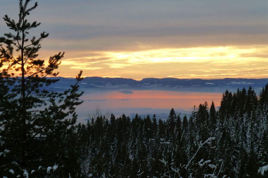 Coucher de soleil sur le fjord derrière une forêt de sapins
