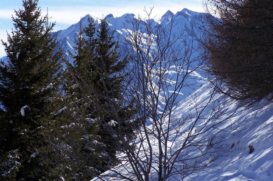Décor d'hiver sur le chemin panoramique